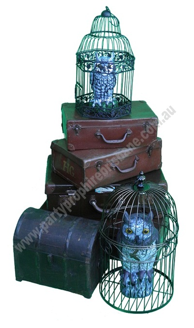Harry Potter Themed Props